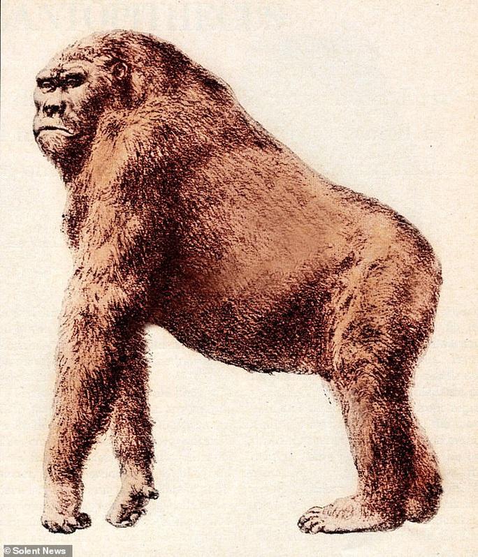 Sự thật ngã ngửa về một loài người khác cổ xưa và khổng lồ - Ảnh 2.