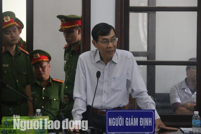 Một luật sư bào chữa cho vợ chồng ôngTrần Vũ Hải bị đưa ra khỏi tòa - Ảnh 5.