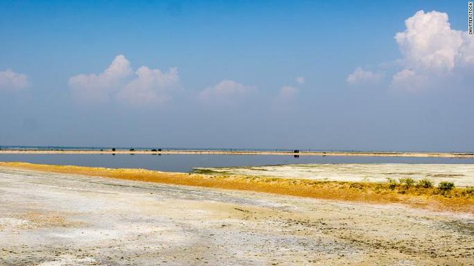 Hơn 2.400 con chim chết bên vùng hồ rộng gần 200 km vuông - Ảnh 2.