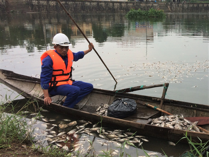 Bất ngờ với nguyên nhân khiến hàng tấn cá chết nổi trắng hồ Đại An - Ảnh 2.