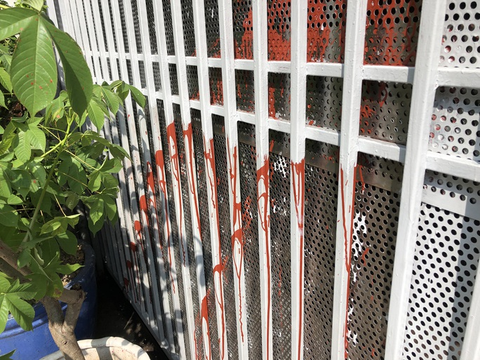 Nhà của một lương y ở TP HCM liên tục bị tạt sơn, chất bẩn - Ảnh 2.