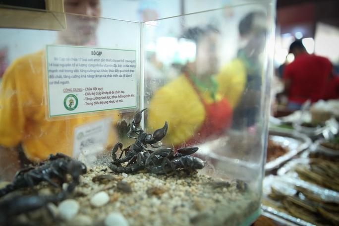 Hàng loạt món ăn độc, lạ khắp châu Á hút giới trẻ TP HCM - Ảnh 10.