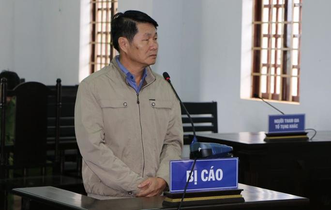 Xà xẻo đất rừng, nguyên phó chủ tịch huyện lãnh án - Ảnh 1.