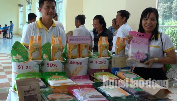 Gạo ST 24 đoạt giải nhất hội thi gạo ngon Đồng Tháp 2019 - Ảnh 1.