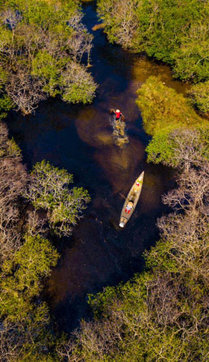 Cuộc thi ảnh Nét đẹp lao động: Lên rừng, xuống biển... - Ảnh 4.