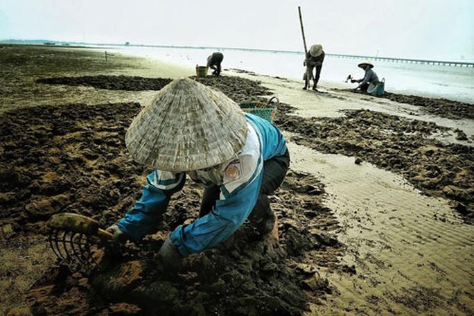 Cuộc thi ảnh Nét đẹp lao động: Lên rừng, xuống biển... - Ảnh 3.