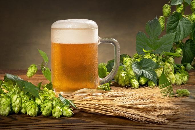 Phát hiện thần dược đẩy lùi cao huyết áp, béo bụng trong… bia - Ảnh 1.