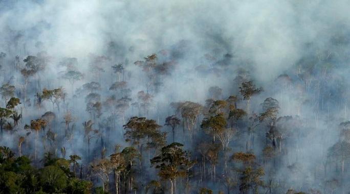 Tổng thống Brazil đổ lỗi Leonardo DiCaprio vụ cháy rừng Amazon - Ảnh 2.