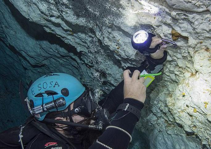Dấu vết cá mập quái thú 2,5 triệu tuổi xuất hiện… giữa thành phố - Ảnh 1.