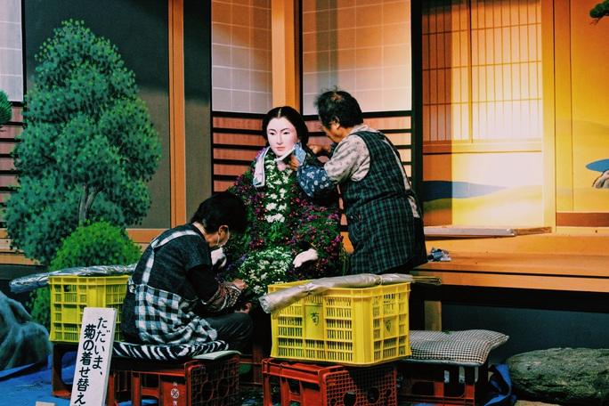 Rủ nhau ngắm hoa anh đào, nhiều người nhầm tưởng về quốc hoa Nhật Bản - Ảnh 9.