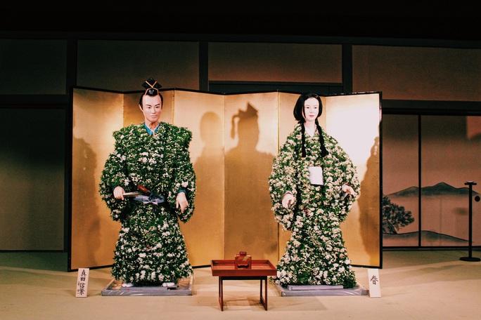 Rủ nhau ngắm hoa anh đào, nhiều người nhầm tưởng về quốc hoa Nhật Bản - Ảnh 7.