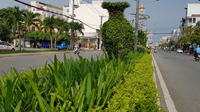 Thanh tra vụ chi hơn 104 tỉ đồng trồng cây xanh ở Sóc Trăng - Ảnh 1.