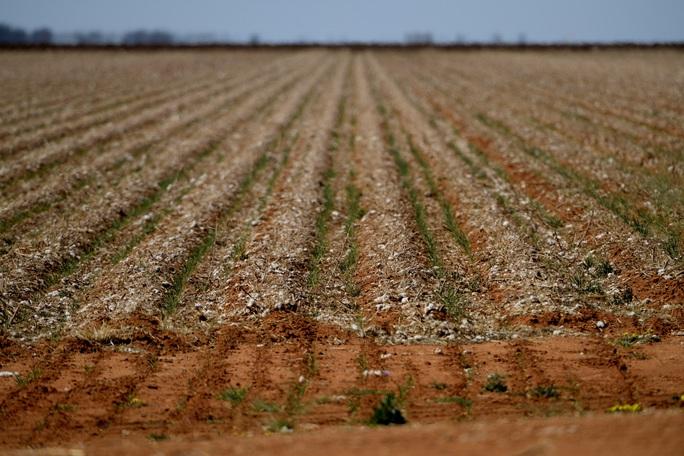Úc giải cứu nông dân bị hạn hán nặng nề - Ảnh 1.