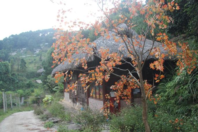 Cận cảnh công trình bí mật trên núi ở Lạng Sơn nghi là phim trường của nhóm người Trung Quốc - Ảnh 5.