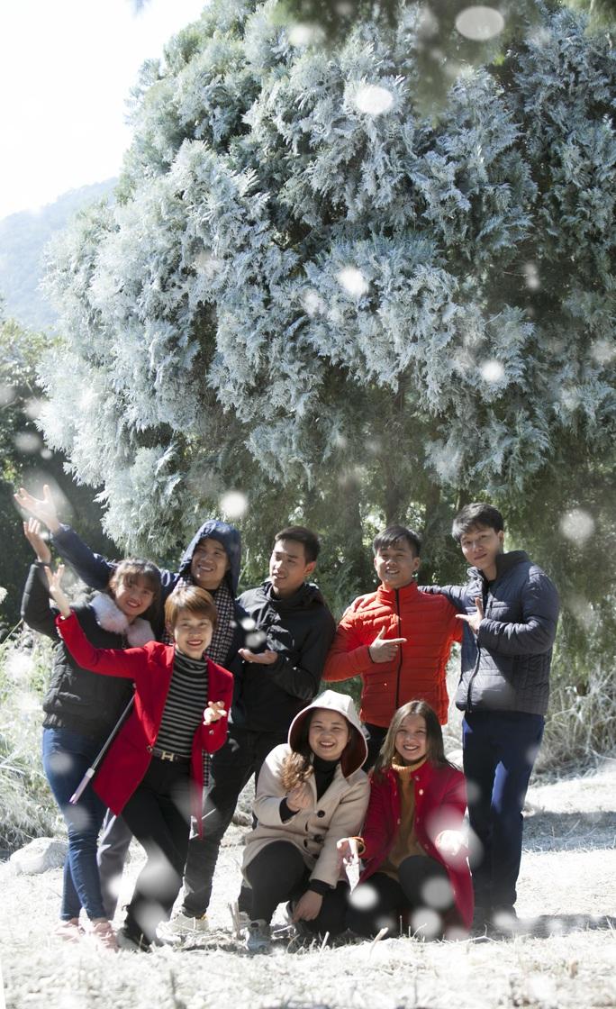 Tuyệt đẹp khu rừng châu Âu tuyết trắng giữa lòng Hà Nội - Ảnh 2.