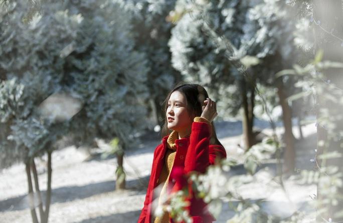 Tuyệt đẹp khu rừng châu Âu tuyết trắng giữa lòng Hà Nội - Ảnh 3.