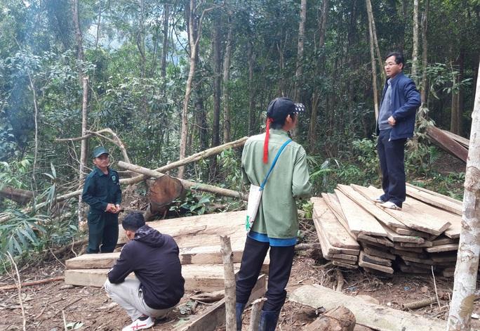 Phát hiện vụ phá rừng quy mô lớn ở Kon Tum - Ảnh 5.