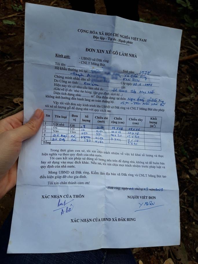 Phát hiện vụ phá rừng quy mô lớn ở Kon Tum - Ảnh 4.