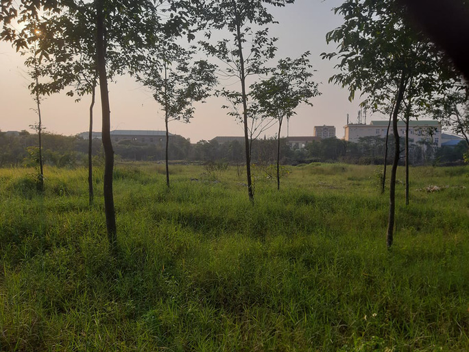"""Cận cảnh khu """"đất vàng"""" xây dựng trụ sở ngàn tỉ bỏ hoang của tỉnh nghèo Nghệ An - Ảnh 8."""