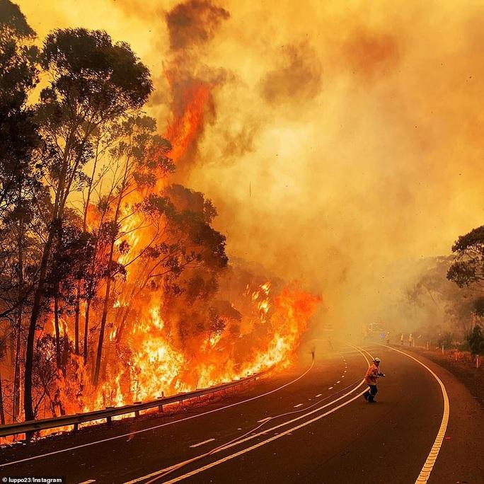 Cháy rừng bao vây Sydney, xe cứu hỏa tông trúng cây, 2 người hy sinh - Ảnh 6.