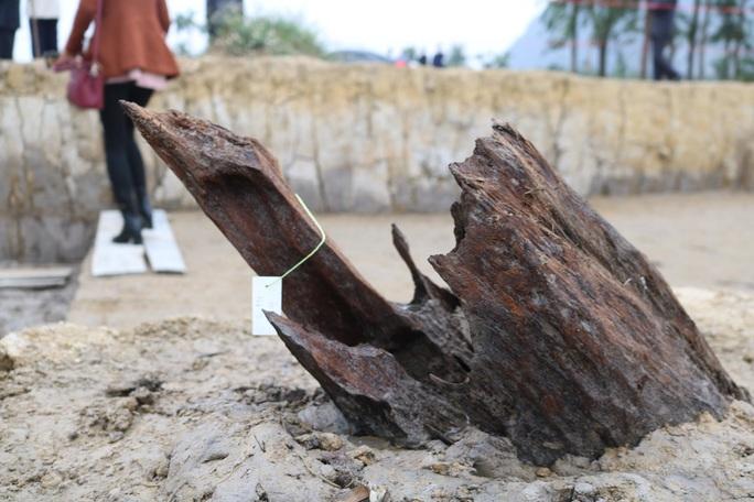 Các nhà khoa học phân tích về bãi cọc Bạch Đằng ngàn năm tuổi - Ảnh 3.