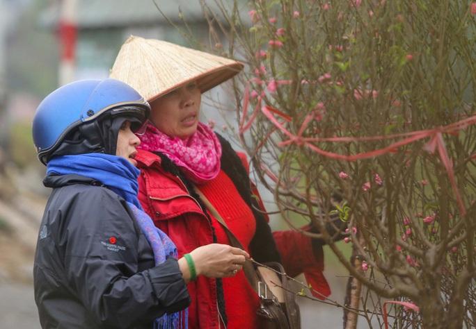 Đào Nhật Tân nở rộ, nhiều tuyến phố Hà Nội ngập tràn sắc xuân - Ảnh 1.