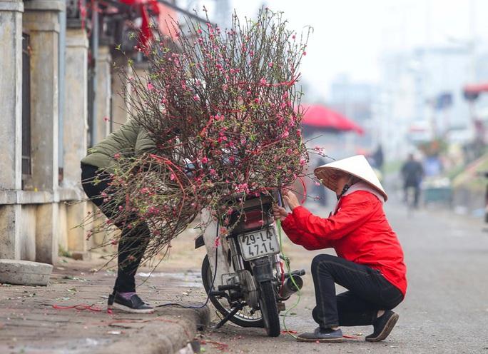Đào Nhật Tân nở rộ, nhiều tuyến phố Hà Nội ngập tràn sắc xuân - Ảnh 6.