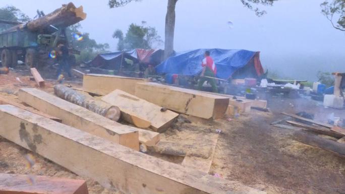 Khởi tố 10 đối tượng mở công trường khai thác gỗ ở 2 tỉnh Đắk Lắk - Khánh Hòa - Ảnh 3.