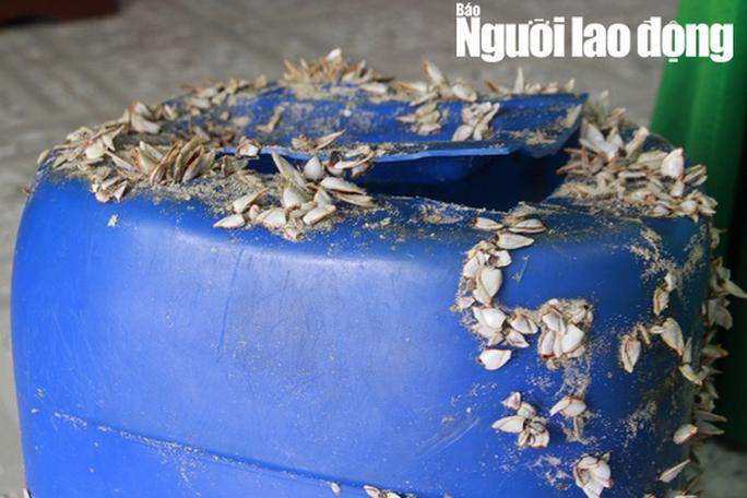Tiếp tục phát hiện can nhựa chứa 21 gói nghi ma túy dạt biển Thừa Thiên - Huế - Ảnh 2.