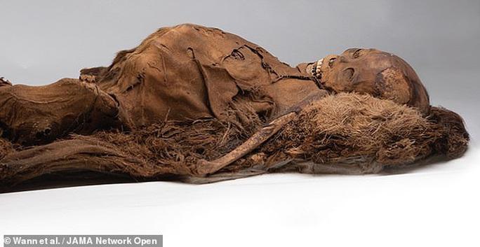 Xác ướp 2 đôi nam nữ kể chuyện khó tin về cái chết ở đảo băng - Ảnh 1.