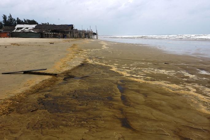 Lộ diện thủ phạm khiến nước biển nhuộm màu cà phê ở Quảng Ngãi - Ảnh 2.