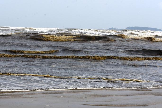 Lộ diện thủ phạm khiến nước biển nhuộm màu cà phê ở Quảng Ngãi - Ảnh 3.