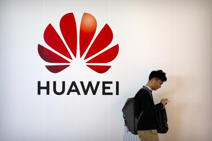 Mỹ vung tiền cho các nước không dùng thiết bị Huawei - Ảnh 1.