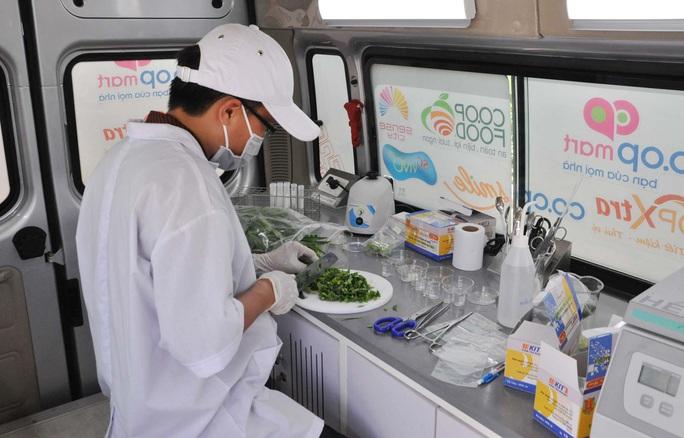 Co.opmart bán rau củ quả, trái cây, thủy hải sản theo chuẩn xuất khẩu - Ảnh 2.