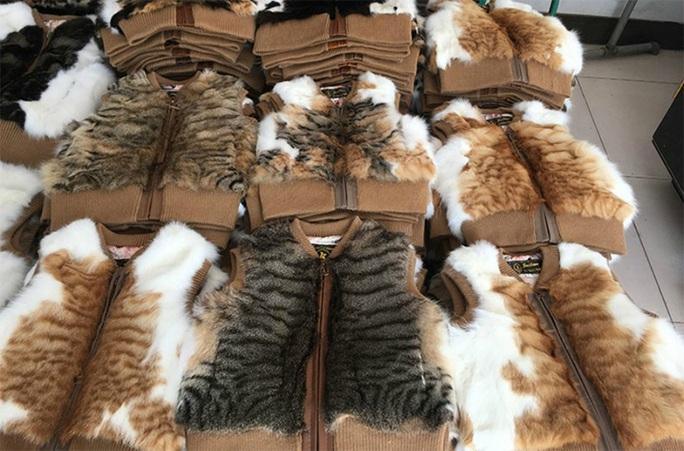 Số phận bi thảm của những con mèo bị luộc sống ở Trung Quốc - Ảnh 3.