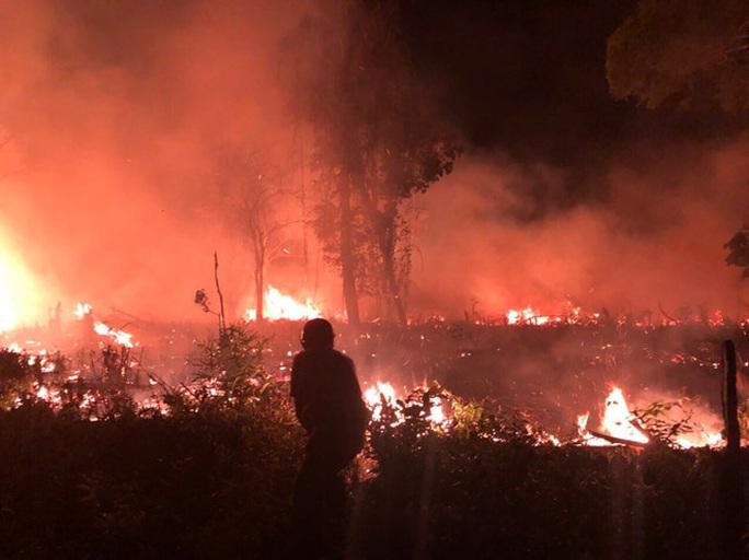 Làm rõ vụ cháy rừng trong đêm ở Phú Quốc - Ảnh 1.