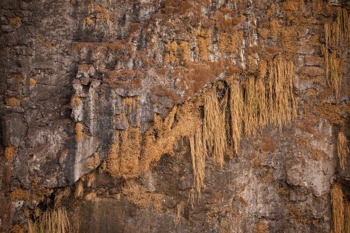 Hạn hán kinh hoàng, thác nước cao 100 mét gần cạn khô - Ảnh 2.