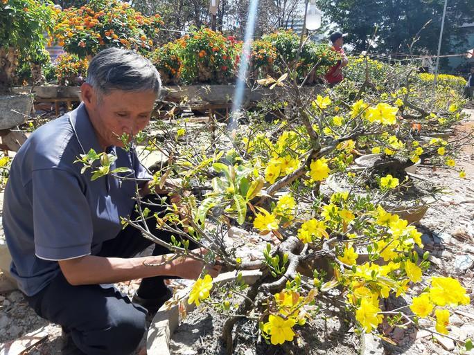 Nông sản rớt giá, các nhà vườn giảm giá bán chạy hoa kiểng - Ảnh 1.