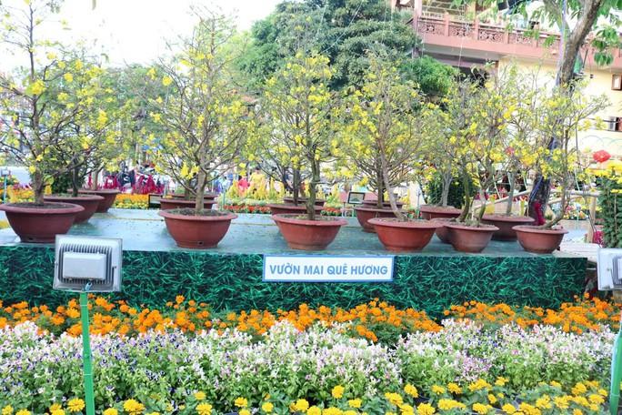 Đường hoa nghệ thuật Cần Thơ rực rỡ khi được lắp 80.000 chậu hoa tươi - Ảnh 2.