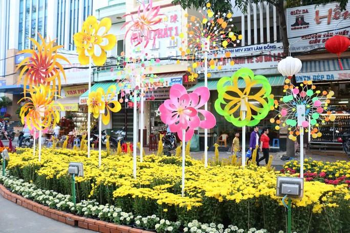 Đường hoa nghệ thuật Cần Thơ rực rỡ khi được lắp 80.000 chậu hoa tươi - Ảnh 5.