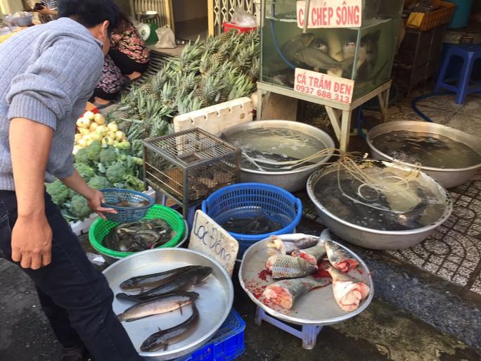 Thịt cá, trái cây Tết đầy chợ - Ảnh 1.