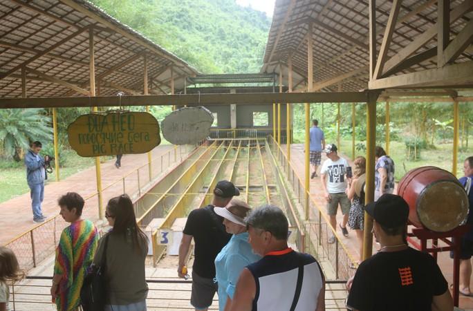 Kỳ thú đua heo cầu may ở Yang Bay - Ảnh 1.
