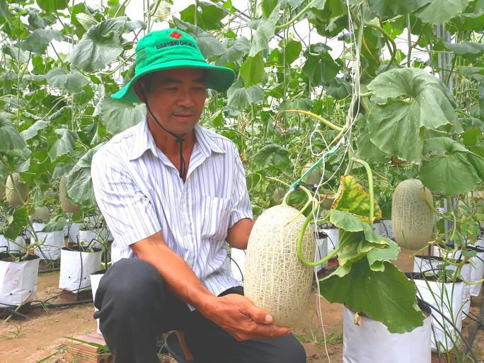 Đầu năm, lãnh đạo tỉnh An Giang lội ruộng thăm đồng cùng nông dân - Ảnh 2.