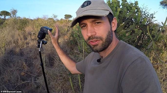 Loạt ảnh đẹp tuyệt của báo đen cực hiếm ở Châu Phi - Ảnh 7.