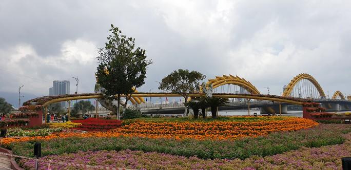 Cầu Vàng rực rỡ tại đường hoa Đà Nẵng - Ảnh 7.