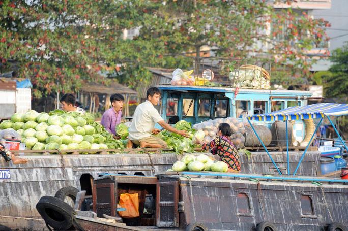 Chợ nổi lớn nhất miền Tây tấp nập nông sản những ngày giáp Tết  - Ảnh 16.