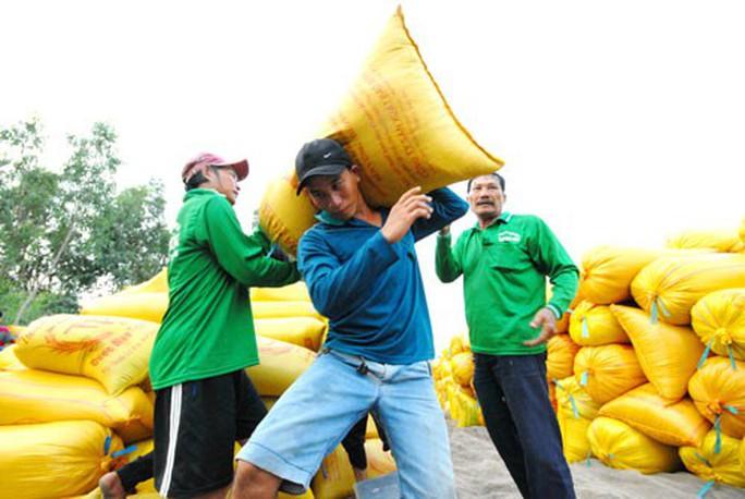 Gỡ khó cho xuất khẩu gạo - Ảnh 1.