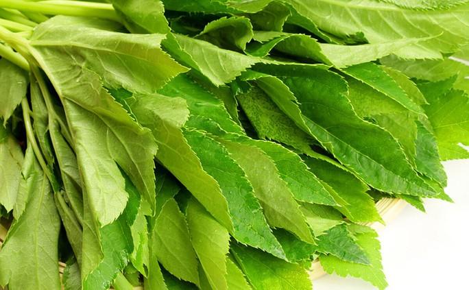 Món rau của các samurai chứa bí mật trường sinh - Ảnh 1.