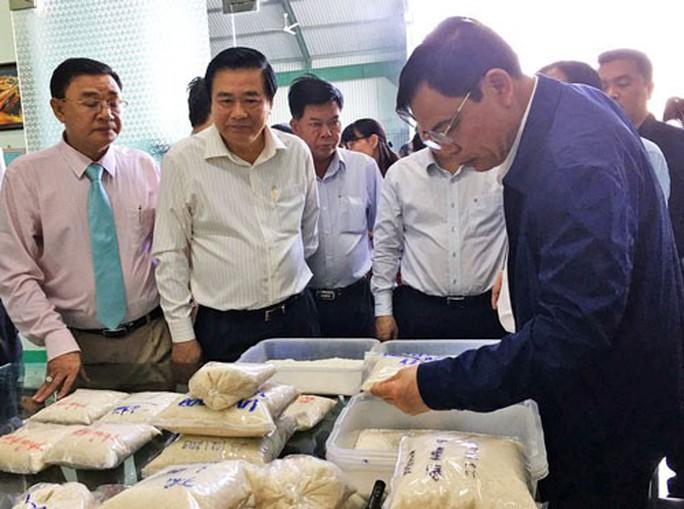 Nhiều kiến nghị hỗ trợ xuất khẩu gạo - Ảnh 1.