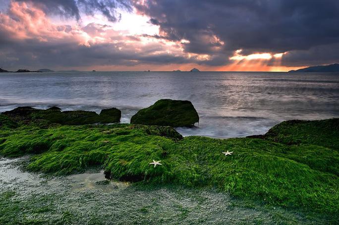 Ngắm bãi rêu xanh tuyệt đẹp hút khách ở Nha Trang - Ảnh 3.